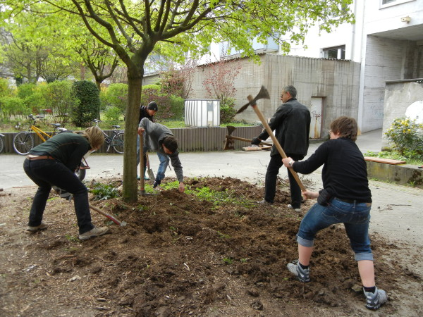 Baumscheibe Hacken Gartenfeld